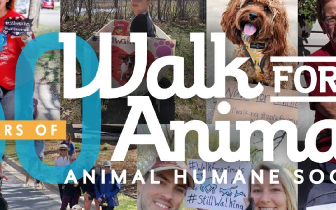 Giving Back – Animal Humane Society Walk for Animal